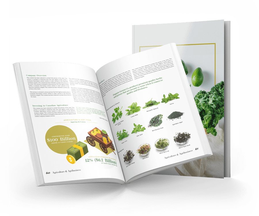 open organic greens business plan showing information